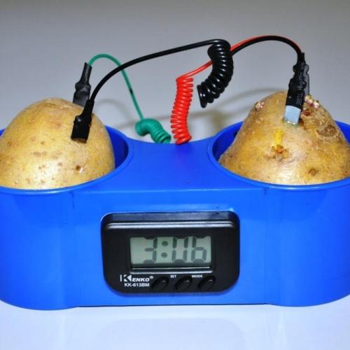 Potato Clock #2 - Cu/Zn Batterie