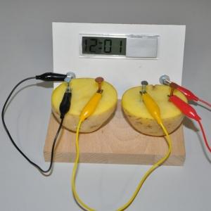 Potato Clock #1- Cu/Zn Batterie