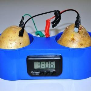 Horloge a pomme de terre #2 – pile Cu/Zn